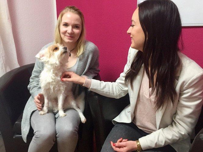 WEBTIMUM Bürohund Oskar im interview